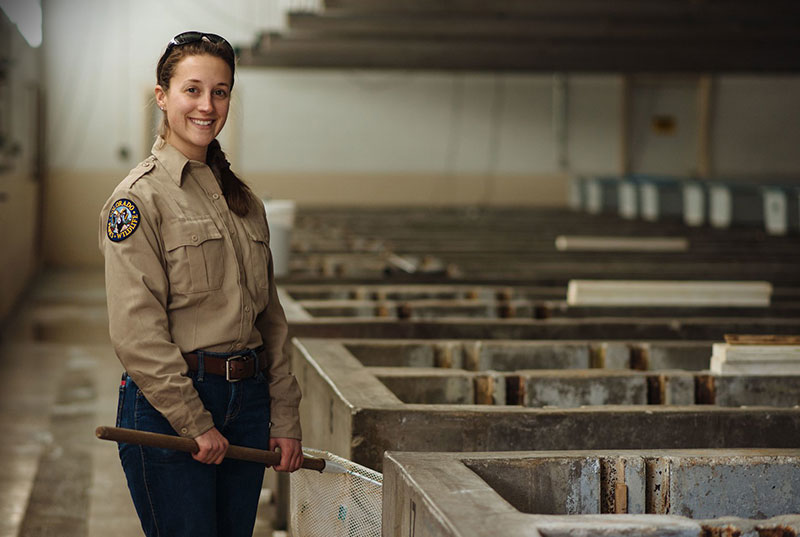 A Colorado Parks and Wildlife employee in a fish hatchery