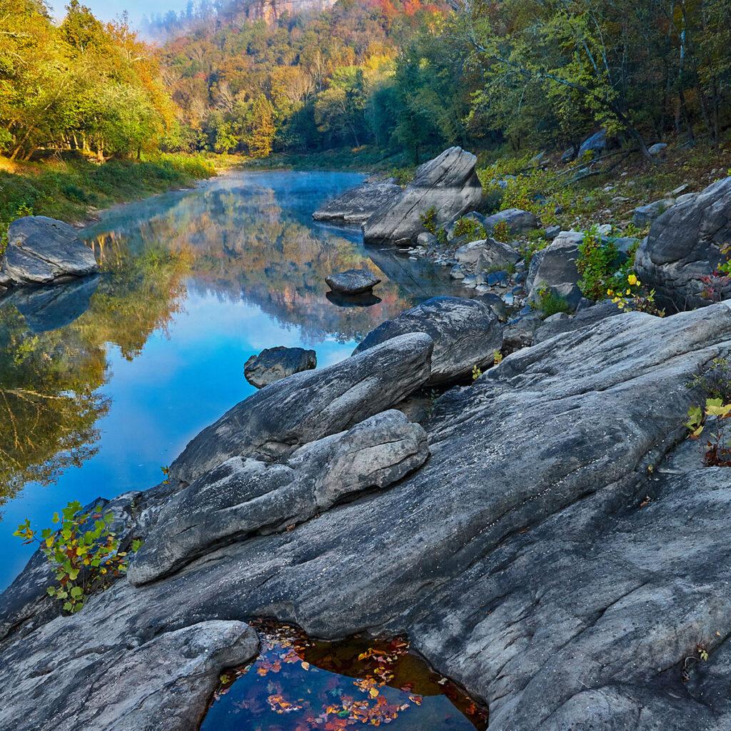 A stream in Kentucky